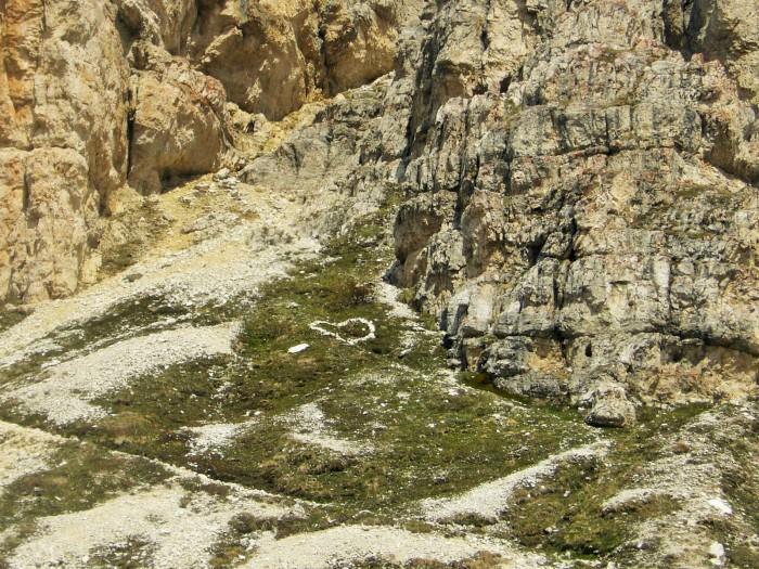 torre di toblin-misurina giugno 2012 044 (2)
