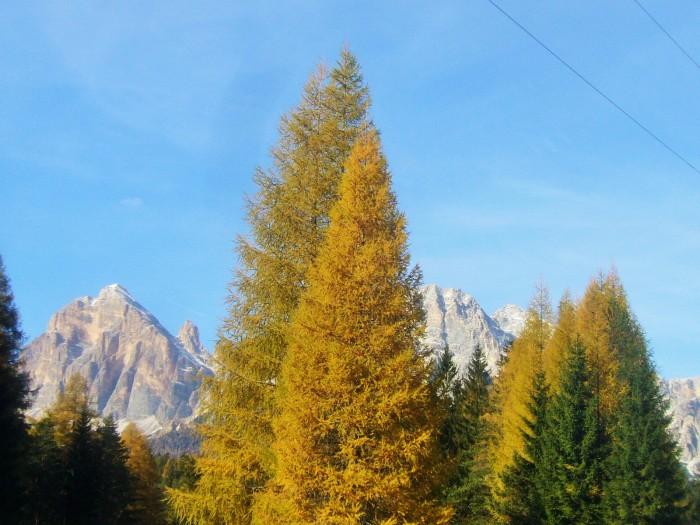 lunga ciclovia delle Dolomiti 029 (2)