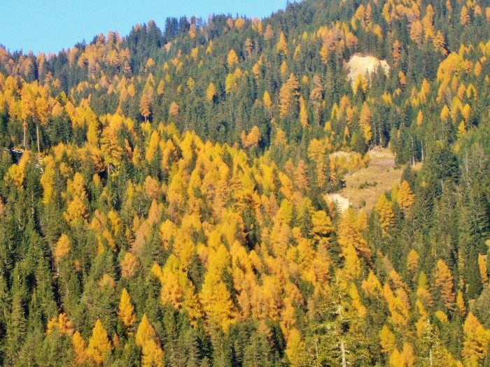 lunga ciclovia delle Dolomiti 062 (2)