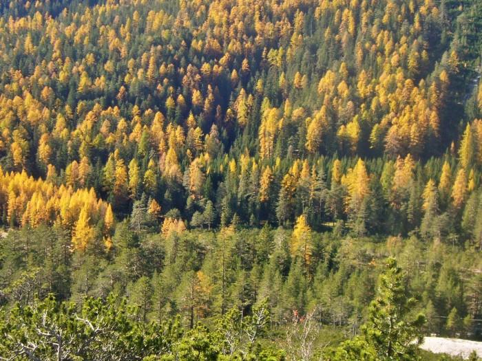 lunga ciclovia delle Dolomiti 108 (2)